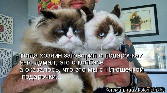Котоматрица: - когда хозяин заговорил о подарочках,  я-то думал, это о колбасе а оказалось, что это мы с Плюшечкой  подарочки...