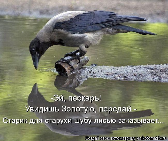 Котоматрица: -Эй, пескарь! Увидишь Золотую, передай -  Старик для старухи шубу лисью заказывает...