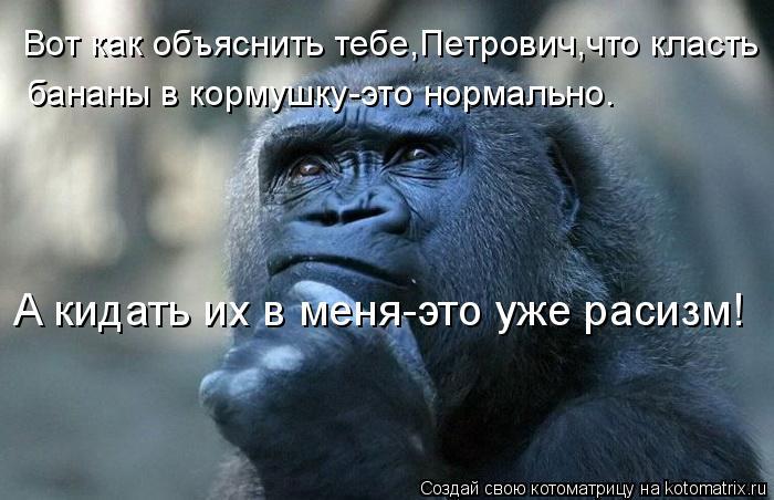 Котоматрица: Вот как объяснить тебе,Петрович,что класть бананы в кормушку-это нормально. А кидать их в меня-это уже расизм!