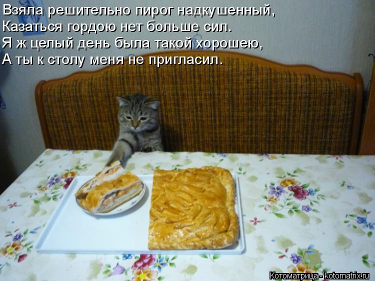Котоматрица: Взяла решительно пирог надкушенный, Казаться гордою нет больше сил. Я ж целый день была такой хорошею, А ты к столу меня не пригласил.