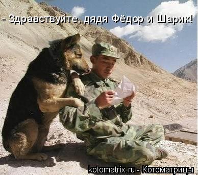 Котоматрица: - Здравствуйте, дядя Фёдор и Шарик!