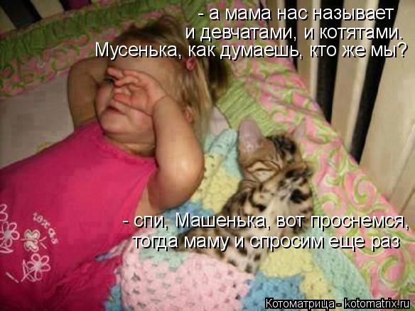 Котоматрица: - а мама нас называет и девчатами, и котятами. Мусенька, как думаешь, кто же мы? - спи, Машенька, вот проснемся,  тогда маму и спросим еще раз