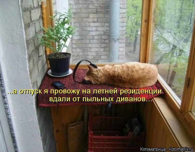 Котоматрица: ...а отпуск я провожу на летней резиденции вдали от пыльных диванов...