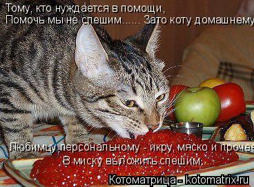 Котоматрица: Тому, кто нуждается в помощи, Помочь мы не спешим...... Зато коту домашнему,  Любимцу персональному - икру, мяско и прочее В миску выложить спеш