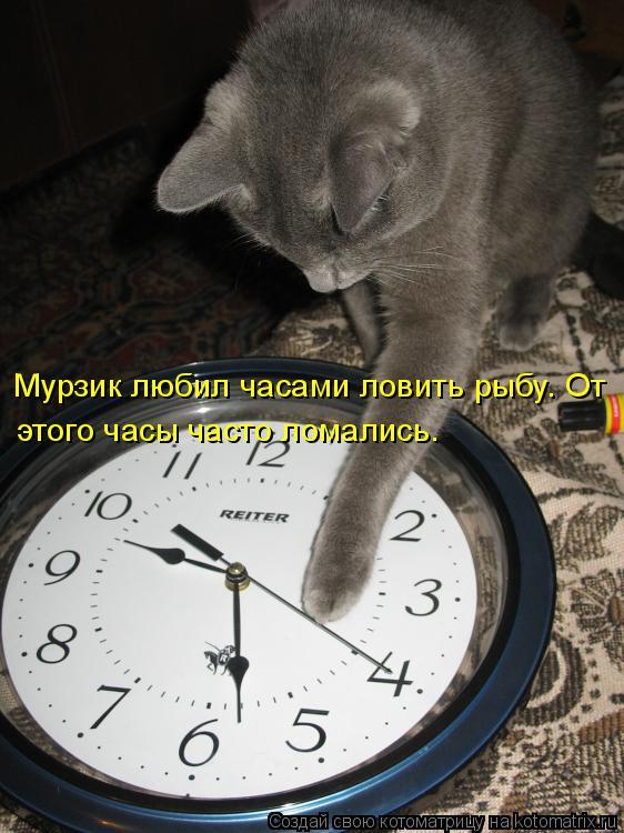 Котоматрица: Мурзик любил часами ловить рыбу. От  этого часы часто ломались.
