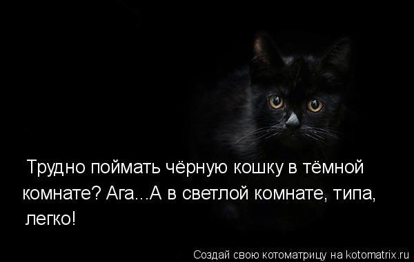 Котоматрица: Трудно поймать чёрную кошку в тёмной  комнате? Ага...А в светлой комнате, типа, легко!