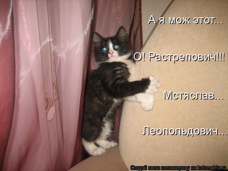 Котоматрица: Мстяслав... Леопольдович... О! Растрепович!!! А я мож этот...