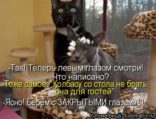 """Котоматрица: -Так! Теперь левым глазом смотри! Что написано? -Тоже самое: """"Колбасу со стола не брать,  она для гостей"""" -Ясно! Берем с ЗАКРЫТЫМИ глазами!!!"""