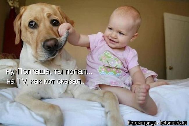 Котоматрица: ну, Полкаша, ты попал... на TV, как кот сказал...