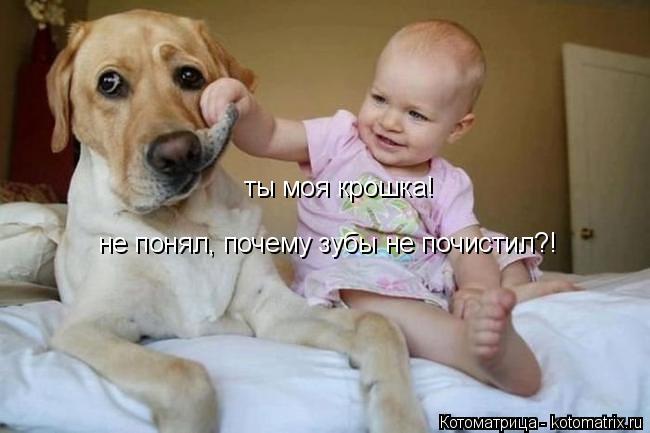 Котоматрица: ты моя крошка! не понял, почему зубы не почистил?!