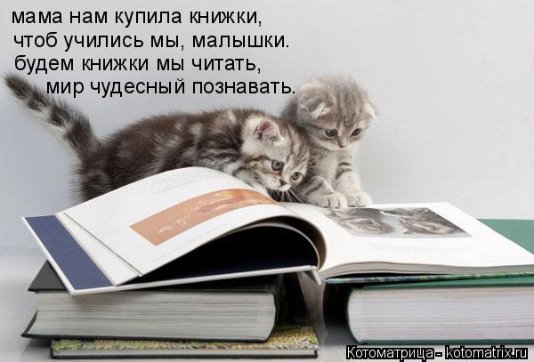 Котоматрица: мама нам купила книжки, будем книжки мы читать, мир чудесный познавать. чтоб учились мы, малышки.