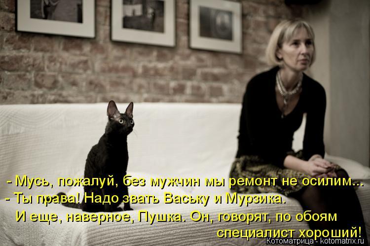 Котоматрица: - Мусь, пожалуй, без мужчин мы ремонт не осилим... - Ты права! Надо звать Ваську и Мурзика.   специалист хороший! И еще, наверное, Пушка. Он, говор