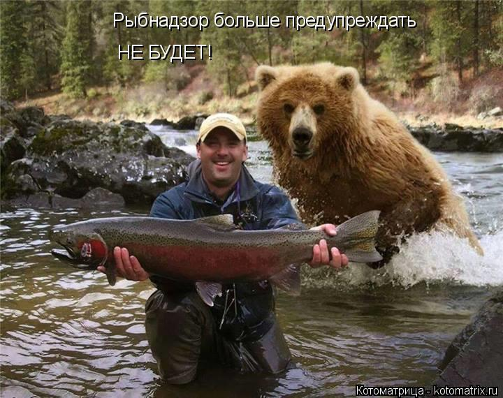 Котоматрица: Рыбнадзор больше предупреждать НЕ БУДЕТ!