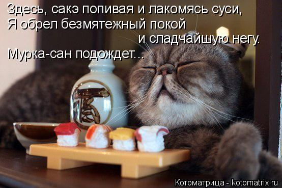 Котоматрица: Здесь, сакэ попивая и лакомясь суси, Я обрел безмятежный покой и сладчайшую негу. Мурка-сан подождет...