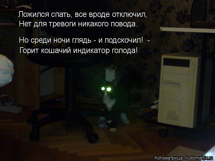 Котоматрица: Ложился спать, все вроде отключил, Горит кошачий индикатор голода!  Но среди ночи глядь - и подскочил!  - Нет для тревоги никакого повода.