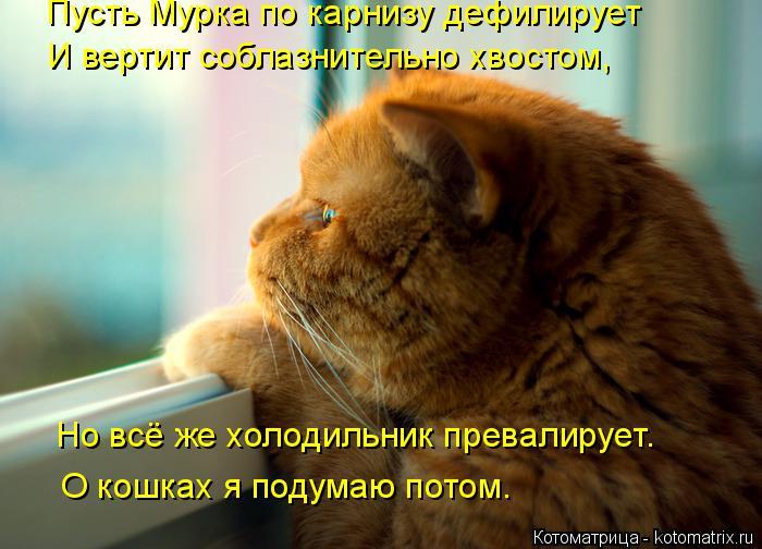 Котоматрица: Пусть Мурка по карнизу дефилирует И вертит соблазнительно хвостом, Но всё же холодильник превалирует. О кошках я подумаю потом.