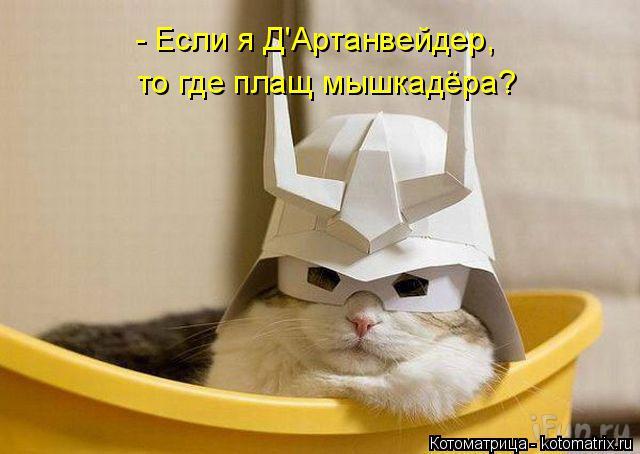 Котоматрица: - Если я Д'Артанвейдер,  то где плащ мышкадёра?