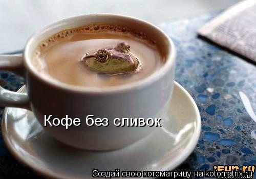 Котоматрица: Кофе без сливок
