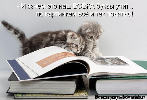 Котоматрица: - И зачем это наш ВОВКА буквы учит... по картинкам всё и так понятно!