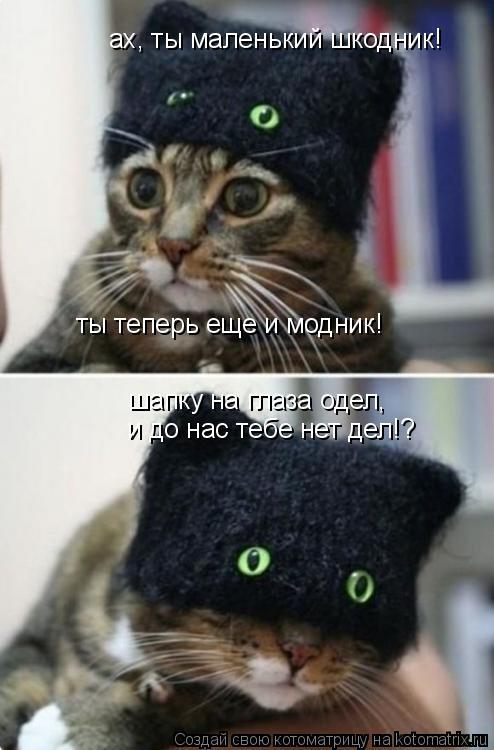Котоматрица: ах, ты маленький шкодник! ты теперь еще и модник! шапку на глаза одел, и до нас тебе нет дел!?