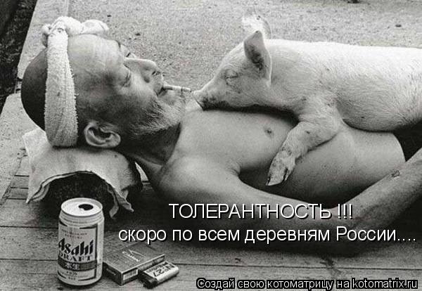 Котоматрица: ТОЛЕРАНТНОСТЬ !!! скоро по всем деревням России....