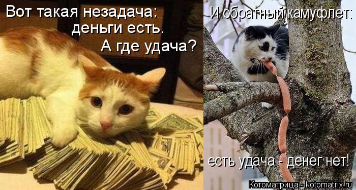 Котоматрица: Вот такая незадача: деньги есть.  А где удача? И обратный камуфлет: есть удача - денег нет!