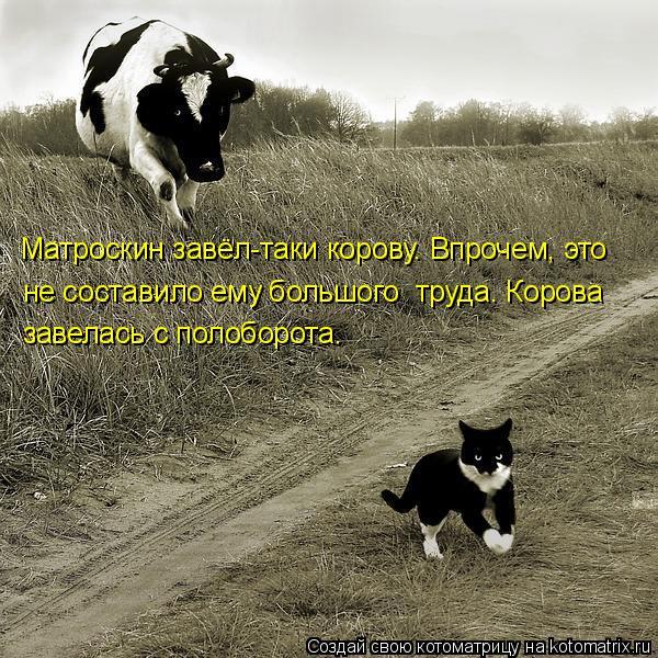 Котоматрица: Матроскин завёл-таки корову. Впрочем, это не составило ему большого  труда. Корова завелась с полоборота.