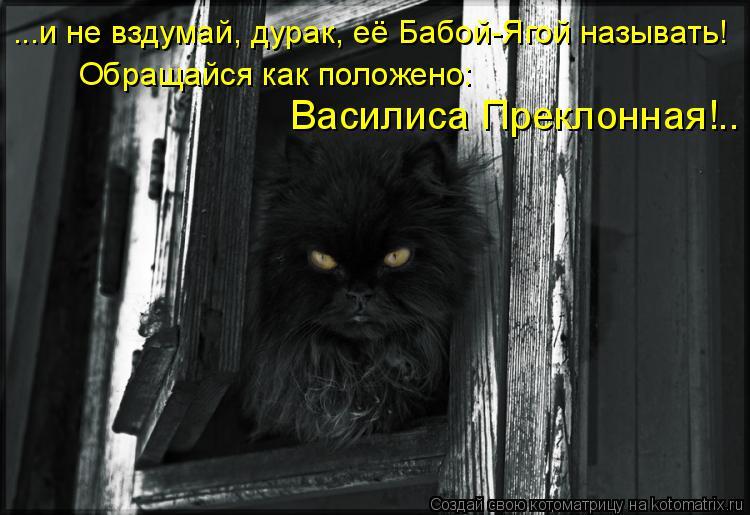 Котоматрица: ...и не вздумай, дурак, её Бабой-Ягой называть! Обращайся как положено:  Василиса Преклонная!..