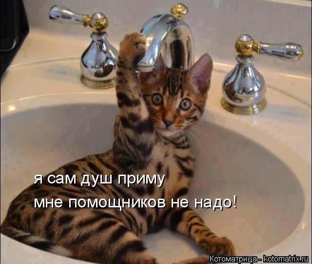 Котоматрица: я сам душ приму мне помощников не надо!