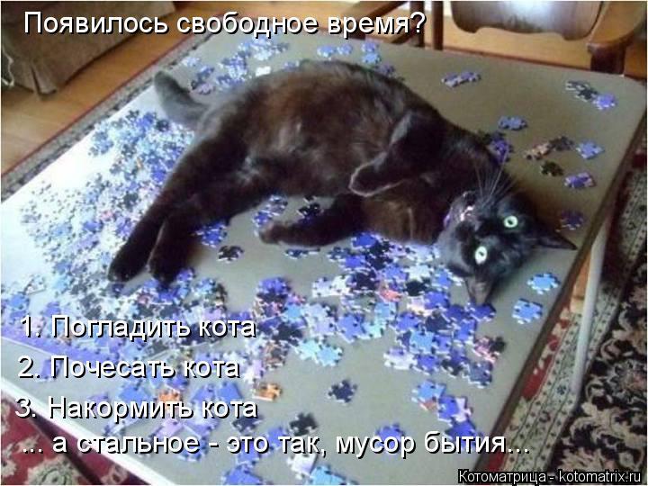 Котоматрица: Появилось свободное время? 1. Погладить кота 2. Почесать кота 3. Накормить кота ... а стальное - это так, мусор бытия...
