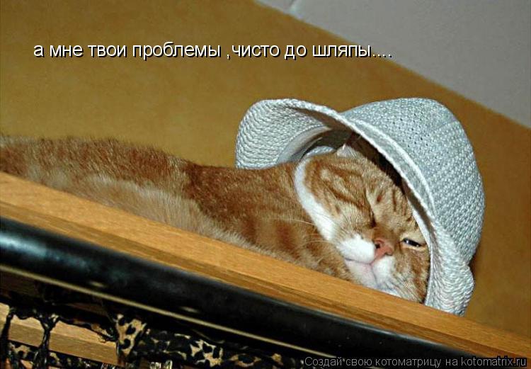 Котоматрица: а мне твои проблемы ,чисто до шляпы....