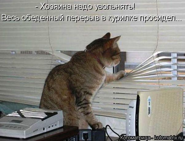 Котоматрица: - Хозяина надо увольнять! Весь обеденный перерыв в курилке просидел...
