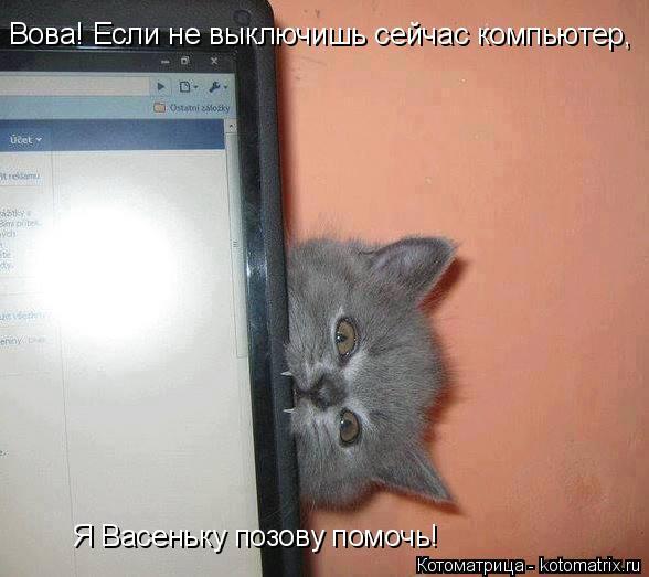 Котоматрица: Вова! Если не выключишь сейчас компьютер, Я Васеньку позову помочь!