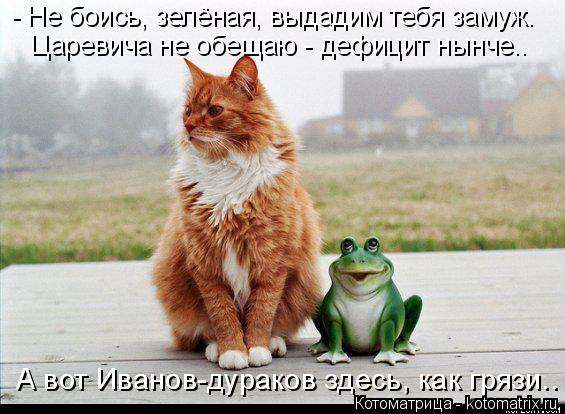 Котоматрица: - Не боись, зелёная, выдадим тебя замуж. Царевича не обещаю - дефицит нынче.. А вот Иванов-дураков здесь, как грязи..