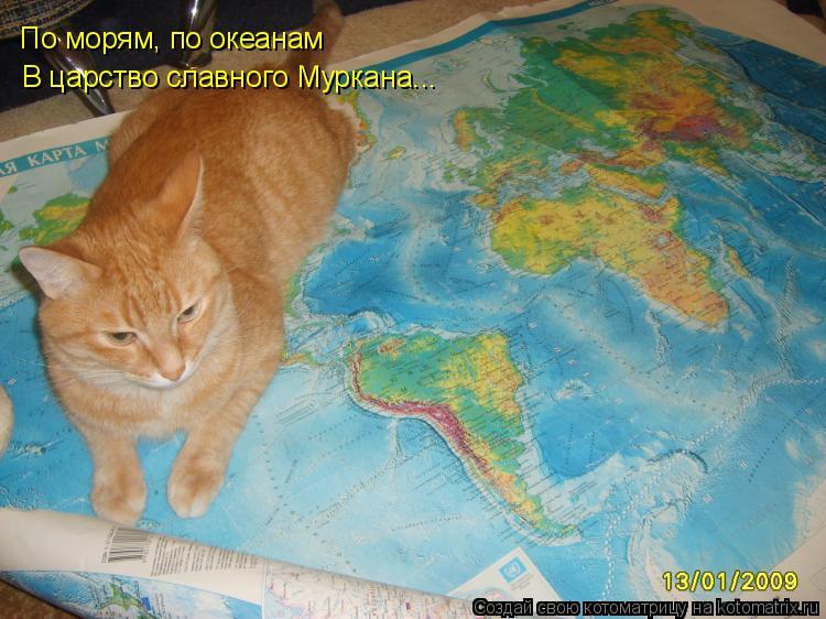 Котоматрица: По морям, по океанам В царство славного Муркана...