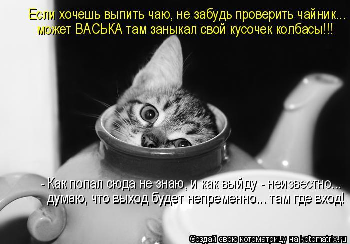 Котоматрица: Если хочешь выпить чаю, не забудь проверить чайник... может ВАСЬКА там заныкал свой кусочек колбасы!!! - Как попал сюда не знаю, и как выйду - не