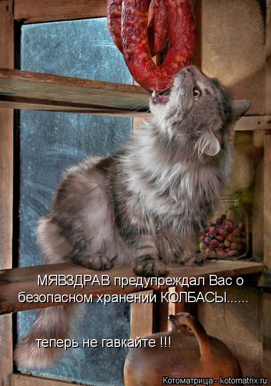Котоматрица: МЯВЗДРАВ предупреждал Вас о безопасном хранении КОЛБАСЫ...... теперь не гавкайте !!!