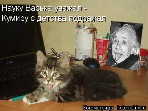 Котоматрица: Науку Васька уважал - Кумиру с детства подражал