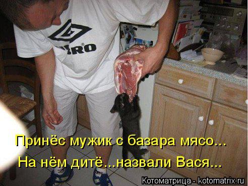 Котоматрица: На нём дитё...назвали Вася... Принёс мужик с базара мясо...