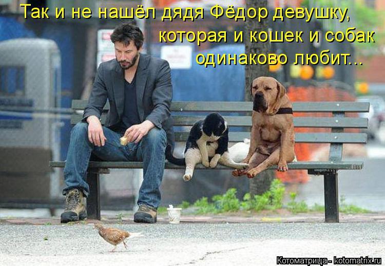 Котоматрица: Так и не нашёл дядя Фёдор девушку, которая и кошек и собак одинаково любит...