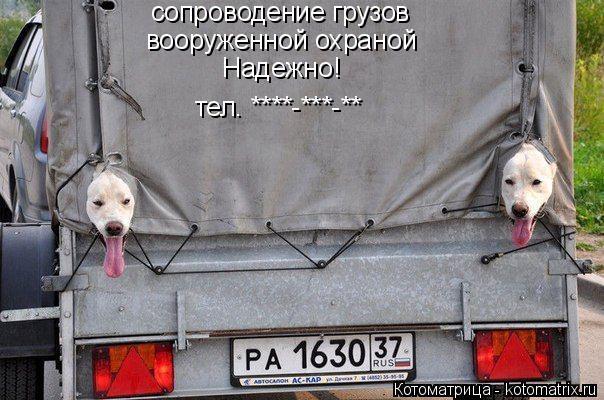 Котоматрица: сопроводение грузов вооруженной охраной Надежно!   тел. ****-***-**