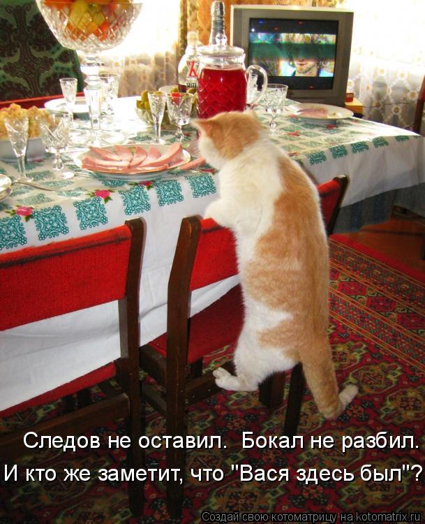 """Котоматрица: Следов не оставил.  Бокал не разбил. И кто же заметит, что """"Вася здесь был""""?"""