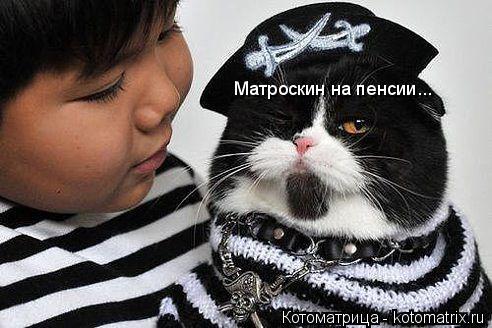 Котоматрица: Матроскин на пенсии...