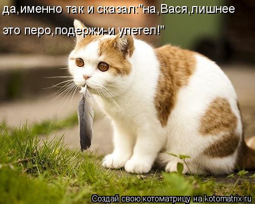 """Котоматрица: да,именно так и сказал:""""на,Вася,лишнее это перо,подержи-и улетел!"""""""