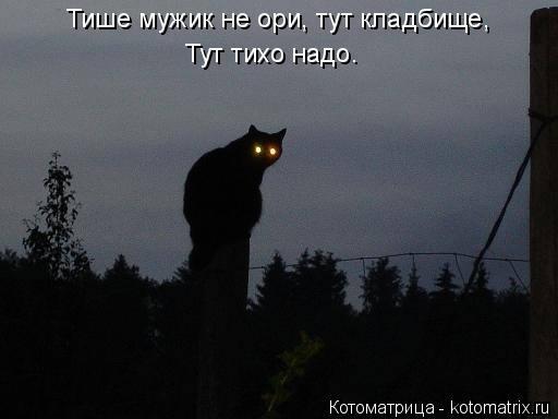 Котоматрица: Тише мужик не ори, тут кладбище, Тут тихо надо.