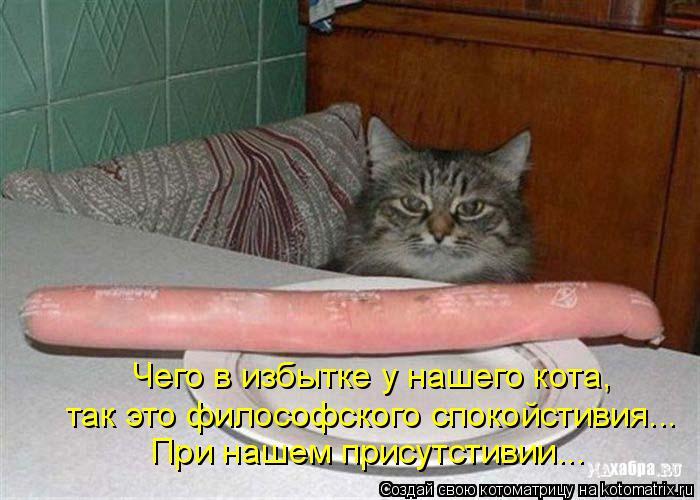 Котоматрица: Чего в избытке у нашего кота, так это философского спокойстивия... При нашем присутстивии...