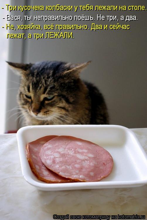 Котоматрица: - Три кусочека колбаски у тебя лежали на столе... - Вася, ты неправильно поёшь. Не три, а два. - Не, хозяйка, всё правильно. Два и сейчас лежат, а т