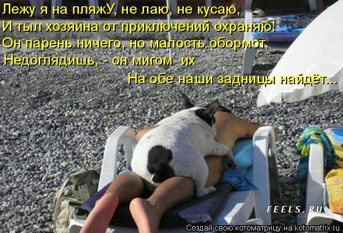 Котоматрица: Лежу я на пляжУ, не лаю, не кусаю, И тыл хозяина от приключений охраняю! Он парень ничего, но малость обормот, Недоглядишь, - он мигом  их  На об