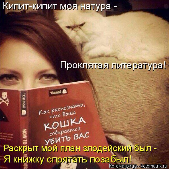 Котоматрица: Кипит-кипит моя натура - Проклятая литература! Раскрыт мой план злодейский был - Я книжку спрятать позабыл!