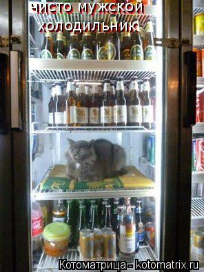 Котоматрица: чисто мужской  чисто мужской  холодильник холодильник